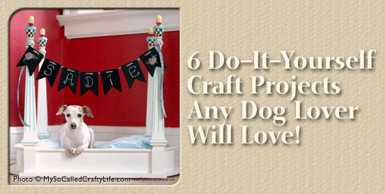 6 DIY Projects
